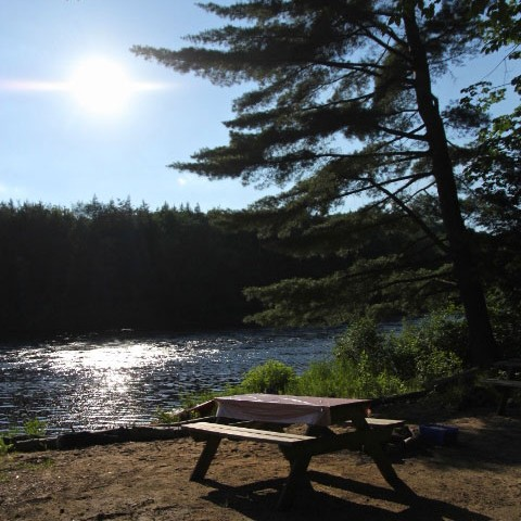 Our campgrounds offers the best seightsee of the Rouge River